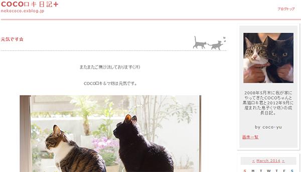 cocoロキ日記