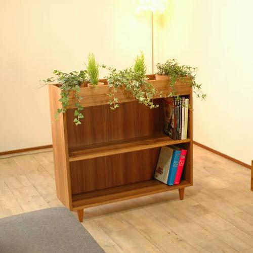 薄型本棚 おしゃれ 観葉植物