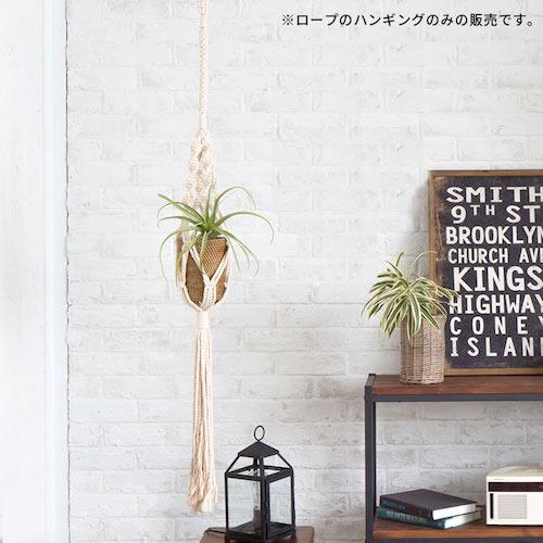 Rope Hanging