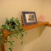 観葉植物でお出迎え!玄関をグリーンで彩る為の3つの秘訣