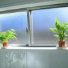 清潔感が大切!浴室や洗面所を観葉植物で彩る為に大切な5つのポイント